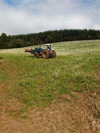 Trator Massey Ferguson 292 4x4 ano 97