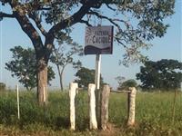Fazenda em Tres Lagoas