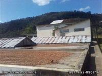 Fazenda de Cacau org�nico, 343hc em Mascote Bahia, na BR101