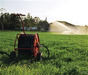 Vendo ou Troco Carretel Irrigat 50/120 por gado Caracu (Touro e Vacas)