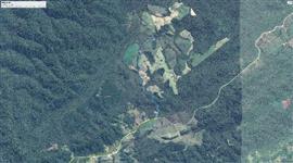 232,6 hectares a 18 Km de Apia�