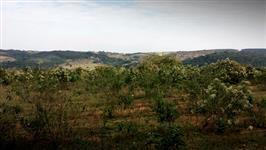 Area, Fazenda, Itupeva-SP-divisa Jundiai Indaiatuba