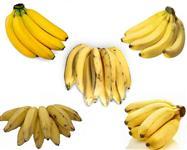 Banana Prata / maçã / nanica / marmelo e/ou terra