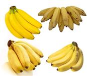 URGENTE - Banana Prata / maçã / nanica / marmelo e/ou terra - LEIA O ANUNCIO
