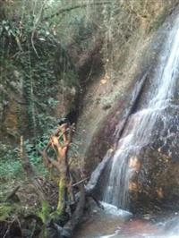 Sítio Sul de Minas