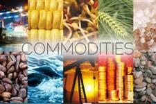 Buscamos produtores para abertura de mercado internacional
