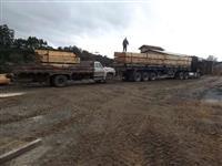 madeira serrada de pinus e eucalipto