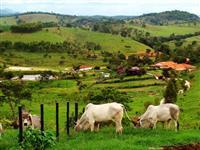 Créditos Rurais - Terrenos - maquinas - produtos agrícolas - fazendas