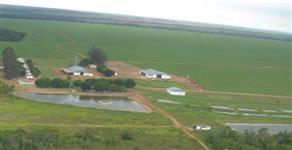 Fazenda em Primavera do Leste MT