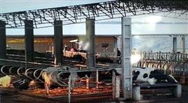 EXCELENTE AREA COM 18,5 ALQUEIRES A 1 KM DA AREA URBANA PRONTA P ATIVIDADE LEITEIRA