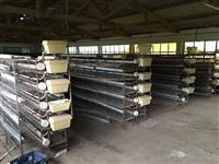 200 Baterias de 15 Gaiolas cada Completas para Codornas