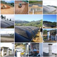 Biodigestor, Biogás e Geração de Energia