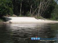 Gleba de 1.500 ha de vegetação amazônica intocada