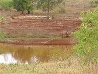 Fazenda Terra Roxa