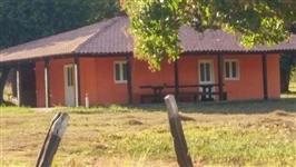 Fazenda de engorda de Bois no Tocantins