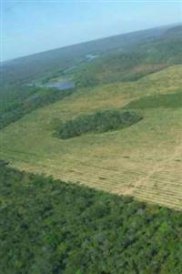 Fazenda 13600ha pode irrigar 8000ha MA