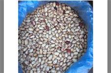 Vendo: Chia, grão de bico, feijão preto, branco,mungo,rajado, vermelho, milho pipoca, milho amilacio