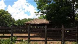 Fazenda plana em Dom Bosco MG. Bonfinopolis de Minas