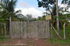 Terreno-plantações