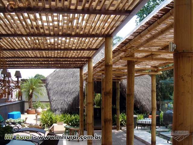 Eucalipto tratado pinus tratado e bambu casas modulares em bioarquitetura co - Pergolas de bambu ...