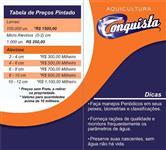 ALEVINOS COM MELHORAMENTO GENÉTICO (PINTADO, CACHARA, JUNDIARA)