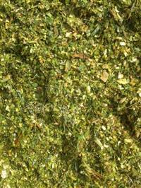 Silagem de Abacaxi Verde (Cortada diariamente)