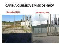 Serviços de Capina Química Bahia, Pernambuco, Alagoas, Sergipe, Paraiba, Rio Grande do Norte, Ceará