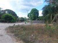 Fazenda Tamanduá - Aldeias Altas (MA)