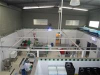 Empresa de Legumes e Verduras Minimamente Processados - Legumes Pre cortados