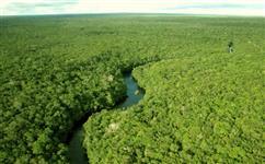 Áreas na Amazônia