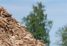 Venda de cavacos de madeira