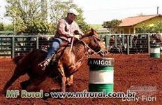 Cavalo Treinado Três Tambores