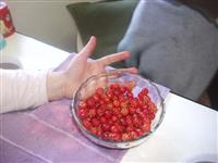 vendo sementes de pitanga