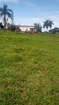 Fazenda 270 Alqeires - PECUÁRIA - Municipio Aporé Goiás