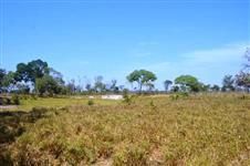 Fazenda de 85 Alqueires no Cocalinho-MT