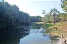 Fazenda de 363 Alqueires no Cocalinho-MT