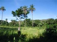 Vendo Fazenda. 91 alqueiro em Planaltina - GO