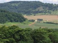 Fazenda Região de Ribeirão Preto-SP