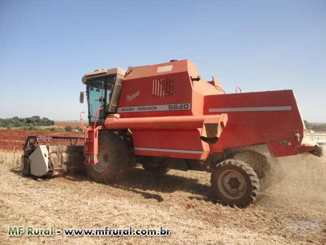 COLHEITADEIRA MASSEY 5650 ADVANCED  -  REVISADA