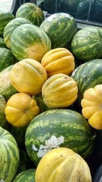 Venda abacaxi,melancia e melão