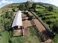Crédito Rural
