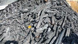 Carvão de qualidade