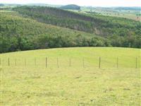 Fazenda Goias e Mato Grosso
