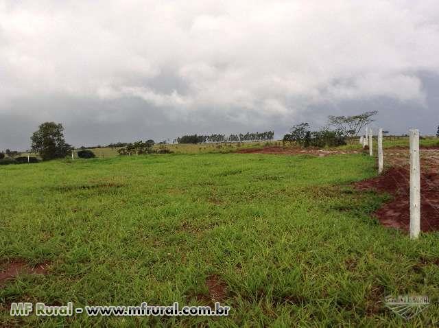 Terreno rural de 6050 m² na cidade de São Jorge do Patrocínio - PR