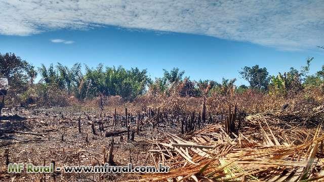Serviços Ambientais, florestal e agronegócio