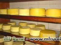 Venda de queijos