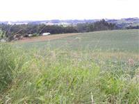 6 hectares totalmente planos e 100% aproveitável a 300m BR 158.