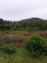 FAZENDA EM CAIAPÔNIA - GOIAS, 8 ALQUEIRES ( 39 HECTARES )