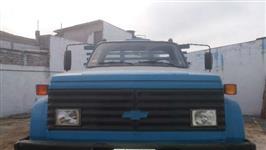 Caminhão Chevrolet Chevrolet D14000 89 ano 89