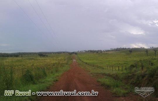 FAZENDA ESPETACULAR NO MARANHAO APENAS 120 KM DA CAPITAL , FAZENDA MODELO TOP